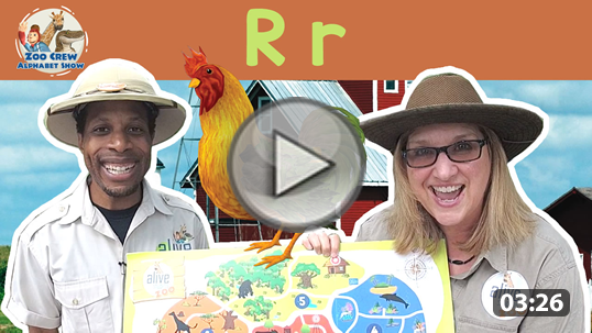 learn letters and letter sounds